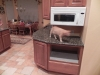 Kitchen Midway, Micro, and cat : )